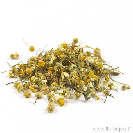 Matricaire Fleur Bio 35g-Floranjou