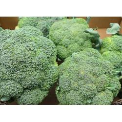 Brocolis - 1kg