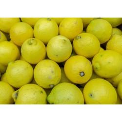 Citron Bio - 1kg