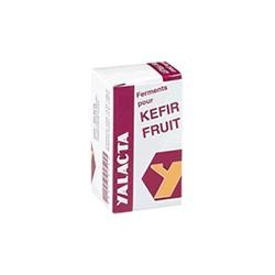 Kéfir Fruit - 4gr - Yalacta