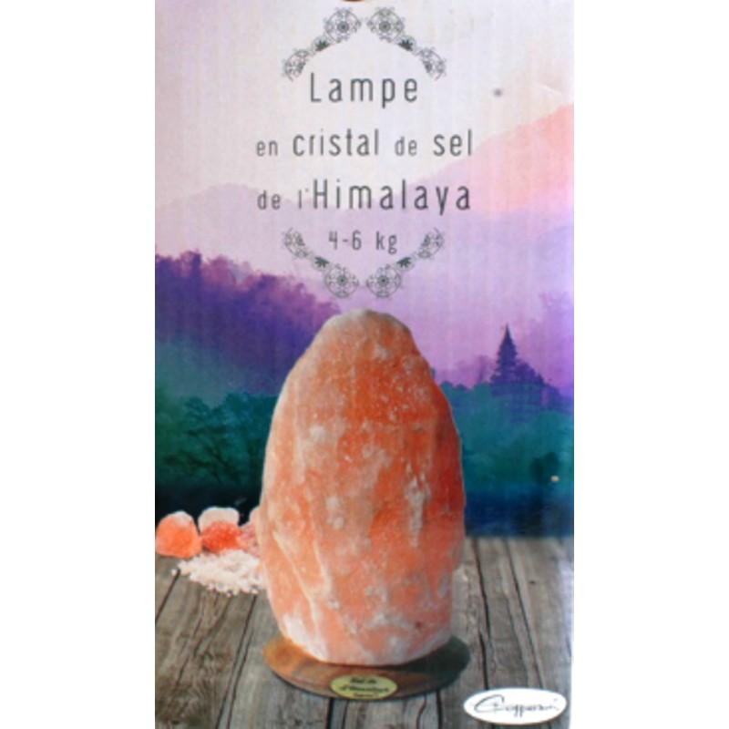 Lampe En Cristal De Sel De L Himalaya Brute Copperson 4 6 Kg