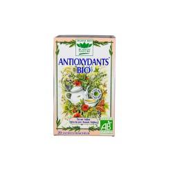 Tisane Antioxydants Bio - 20 Sachets - Romon nature