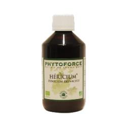 Héricium - Phytoforce - 300 ml - Vecteur Energy