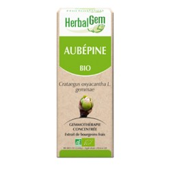 Aubépine Macérat Bio - 50ml - HerbalGem