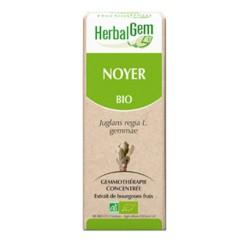 Noyer Macérat Bio - 50ml - HerbalGem