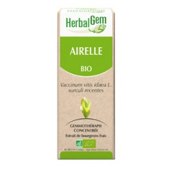 Airelle Extrait Bio - 50ml - HerbalGem