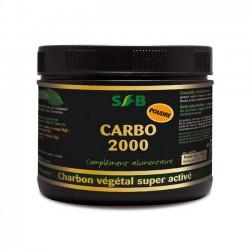 Carbo 2000 Charbon Végétal Super Activé - 100g Poudre - Laboratoires SFB