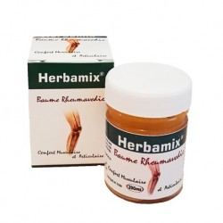 Baume Rheumavedic - 20gr - Herbamix