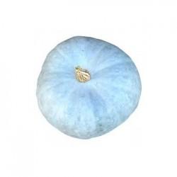 Courge Bleue - 1kg