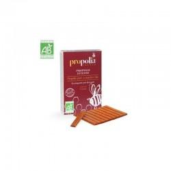 Propolis Intense - Propolis Pure à Macher - 10g - Propolia