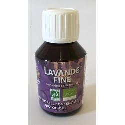 Eau Florale Lavande Fine - 100ml - Lofloral