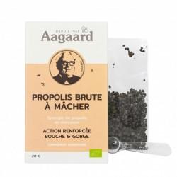 Propolis Brûte à Mâcher - 20g - Aagaard Propolis