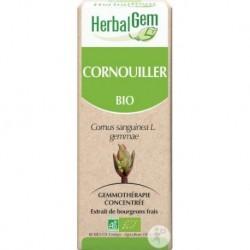 Cornouiller - 50ml - HerbalGem