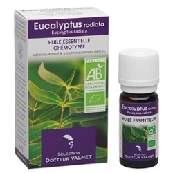 Eucalyptus radiata, Huile Essentielle 10ml-Docteur Valnet